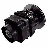 Motor Elétrico para Aspirador de Pó WD1456BR 53 Litros 6HP  - RIDGID-20013