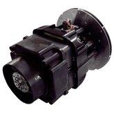 Motor Elétrico para Aspirador de Pó WD4075BR 15 Litros 5HP  - RIDGID-16588