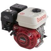 Motor à Gasolina 5,5CV 4T sem Alerta de Óleo B4T-6.5H - BRANCO-90313900