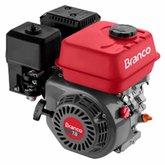 Motor à Gasolina 4T 208CC 7,0CV com Partida Manual