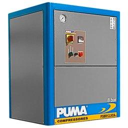 Compressor de Ar Parafuso 12,5CV 8 a 10 Bar 220V