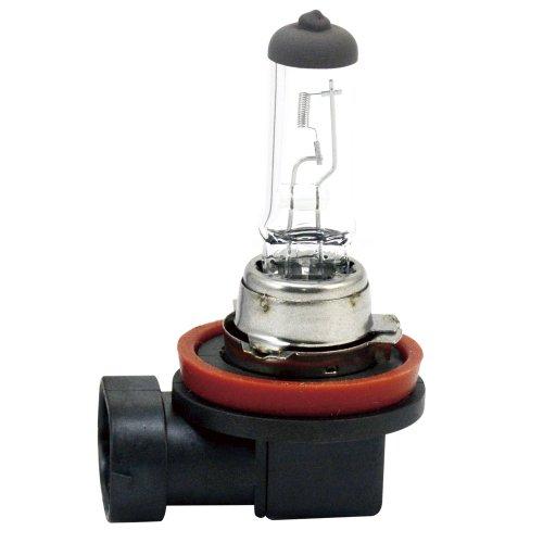 lâmpada automotiva h11 12v 55w comum unitária