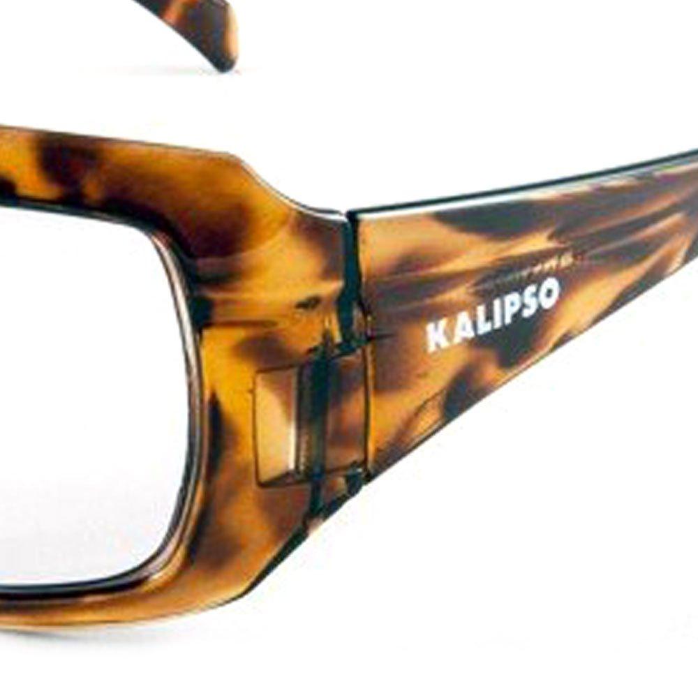 Óculos de Proteção Ibiza Incolor com Armação Marrom - Imagem zoom