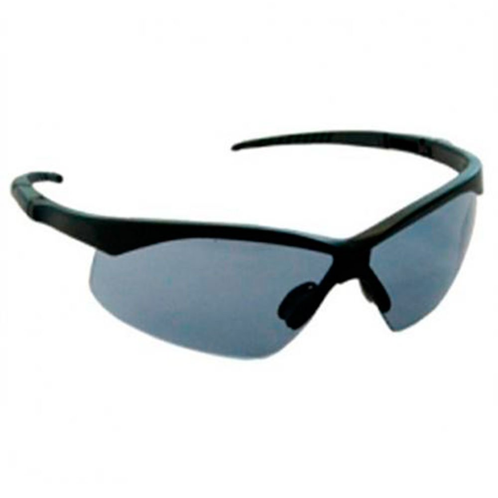 0c761ddeb0a9e Óculos de Segurança Cinza Evolution - CARBOGRAFITE-12348712 - R 13.9 ...